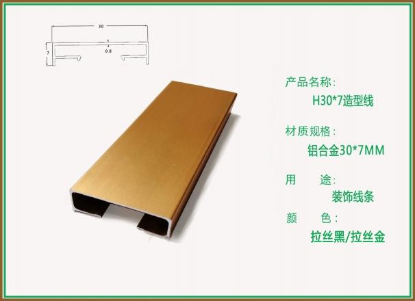 柏思特拉丝黑/拉丝金U型H30-7造型线条